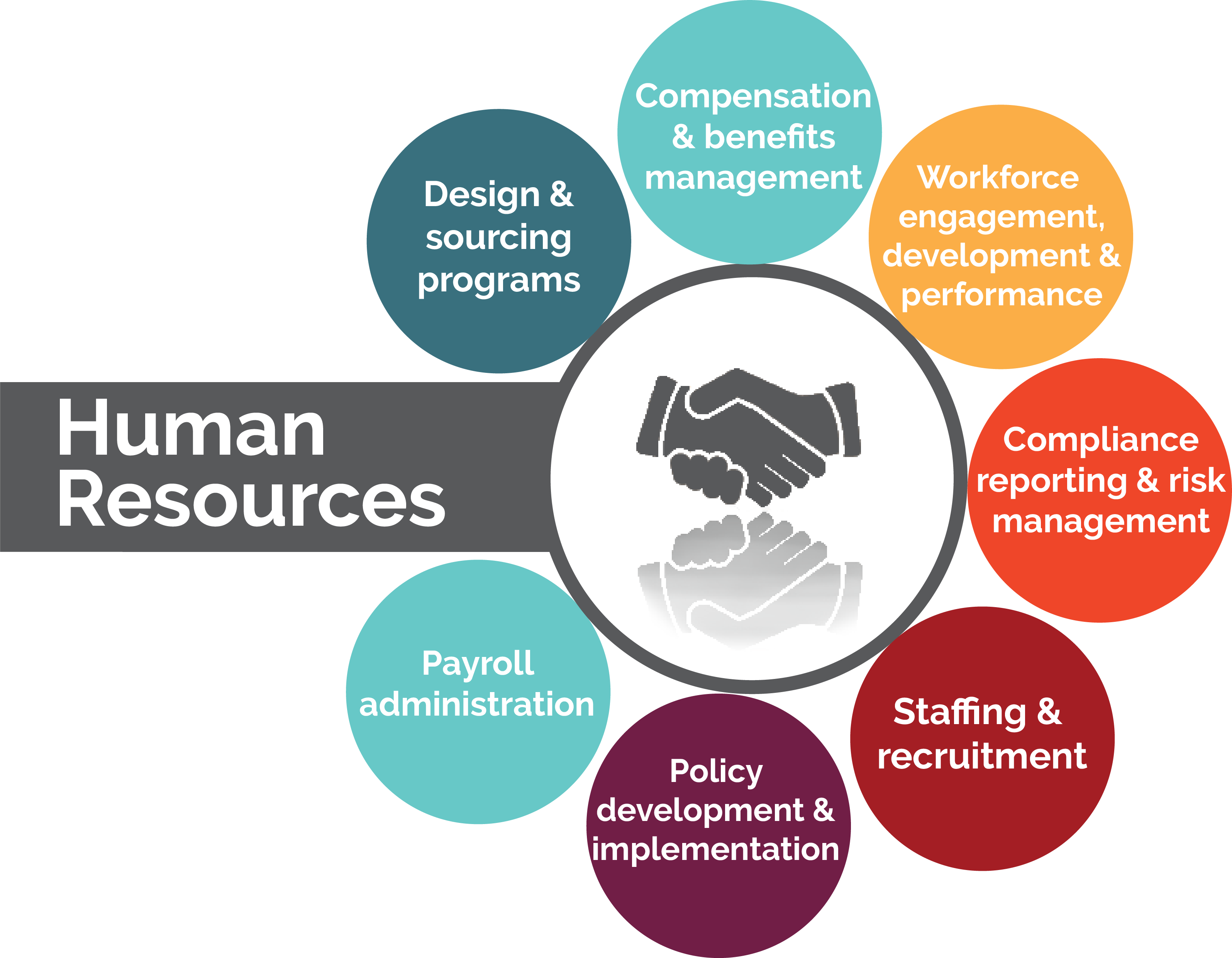 Roles And Functions Of The Human Resource Department